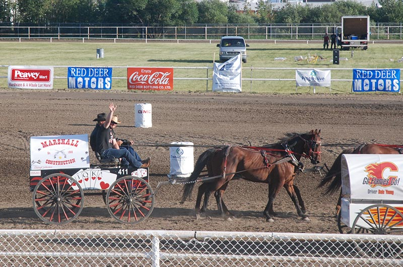 Marshall Construction at the Red Deer chuckwagon races